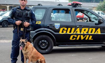 Guarda Civil de Rio Claro aposenta cão Thor após 8 anos de serviço