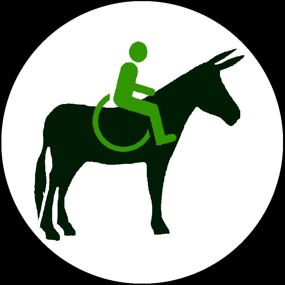 logo Handiane
