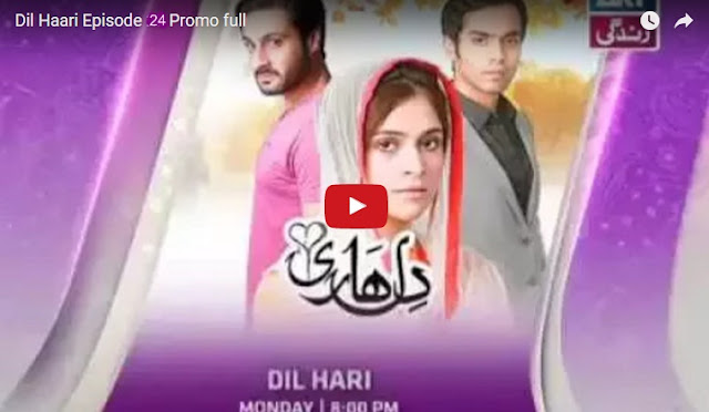 Dil Hari Episode 24 Promo Full by Ary Zindagi