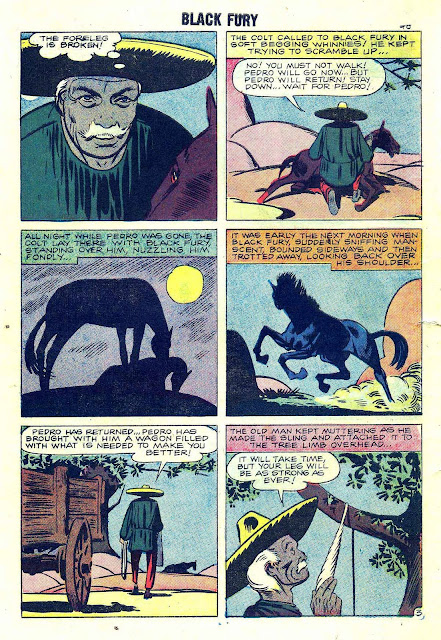 Black Fury v1 #16 charlton comic book page art by Steve Ditko