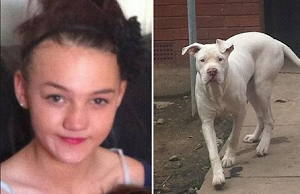 4-Year-Old Girl Dies After Being Lacerated By 3 Starved Dogs