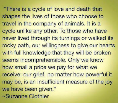 Sympathy Poem on Pet Loss by Suzanne Clothier