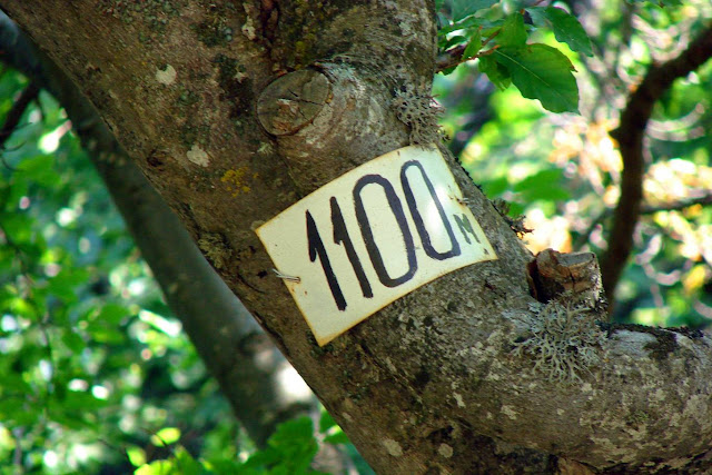 Указатель 1100 м - путь на Эклизи-Бурун