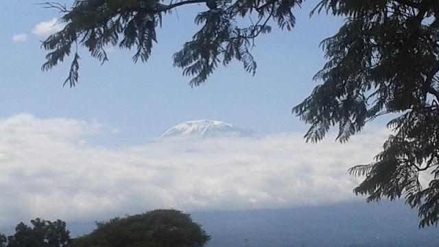 El Kilimanjaro, siempre entre nubes