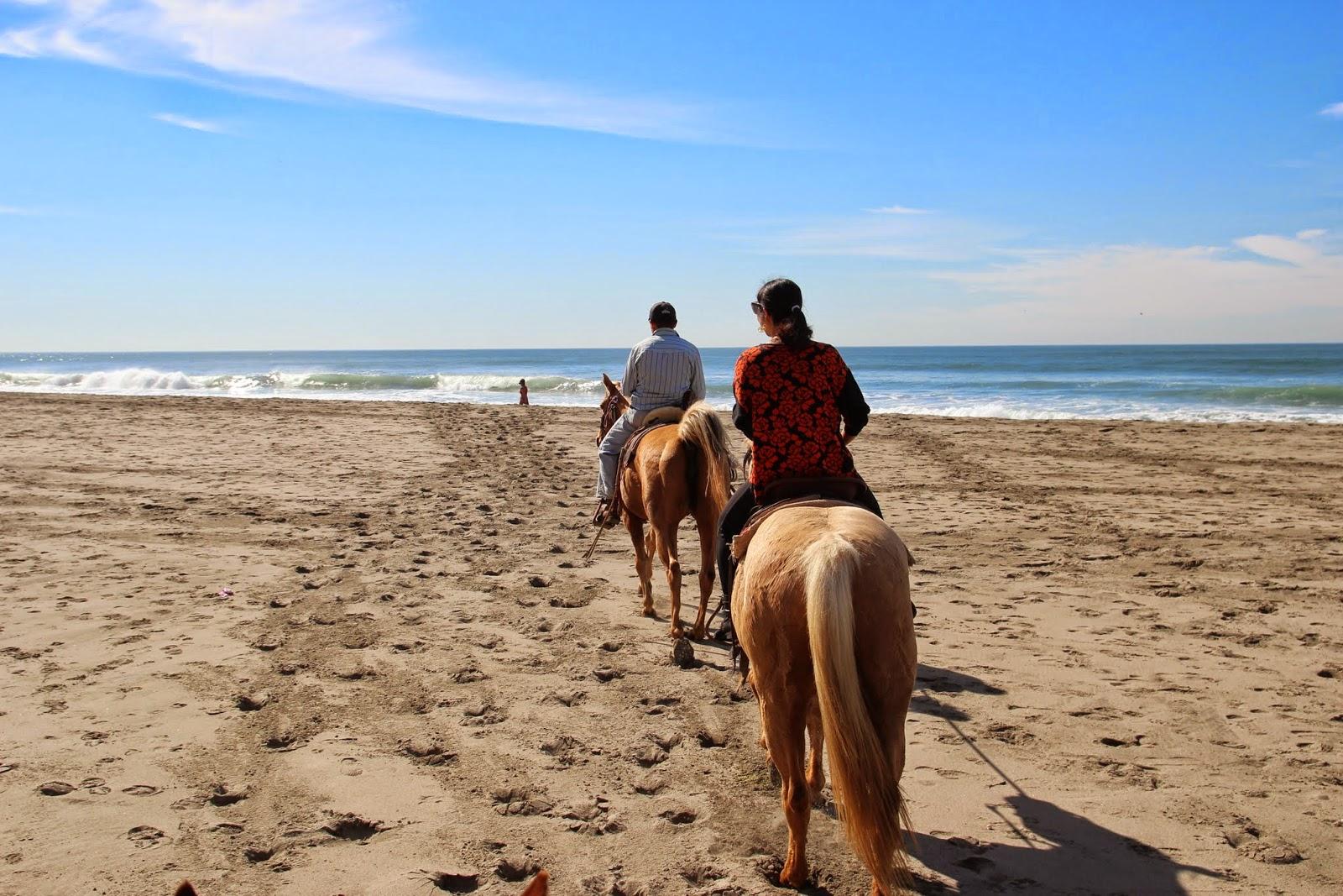 Horseback Riding San Francisco Beach The Best Beaches In World