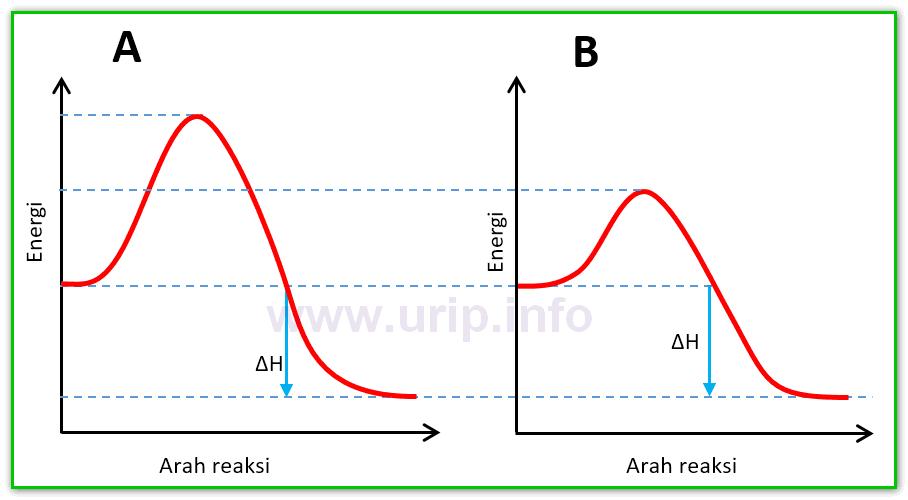 Pembahasan soal tentang profil diagram energi urip dot info secara kinetika reaksi a akan berjalan relatif lebih lambat dibanding b meskipun keduanya bereaksi secara eksotermis tingginya energi aktivasi b lebih ccuart Image collections