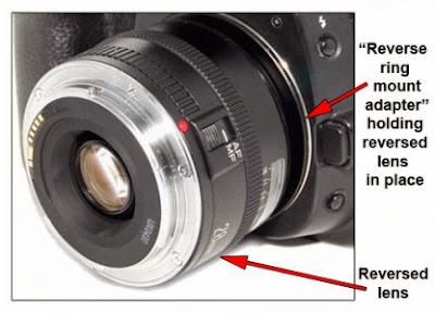 pasang lens terbalik dengan Reverse Ring makro