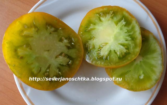 томаты сорта Искуситель