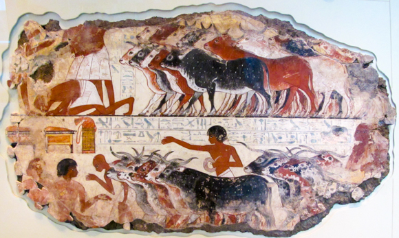 This painting is part of a wall showing Nebamum inspecting cattle.