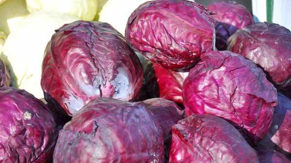 Quais alimentos comer ou cortar para prevenir câncer de mama