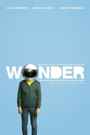 Poster Wonder 2017
