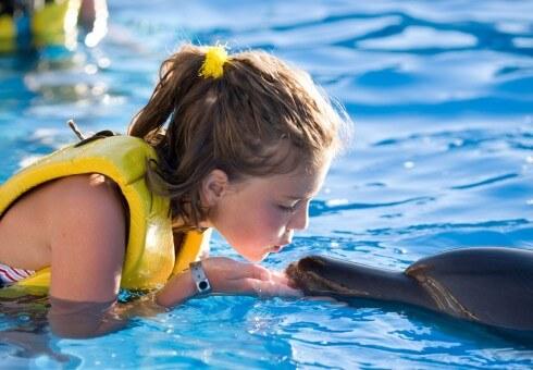 www.viajesyturismo.com.co490x340