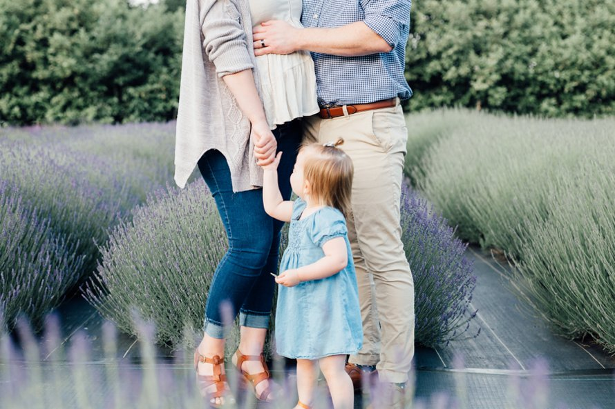 Lavender Field Maternity Photography by Something Minted and More