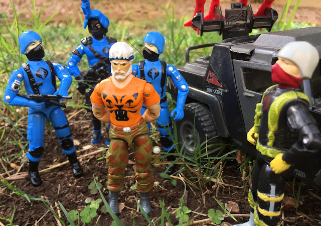 Cobra Soldado, Cobra Trooper, Bootleg, FActory Custom, Black Major, Tiger Force Outback, European Exclusive, Vibora, Brazil, Estrela, Brazilian Exclusive, Comandos em acao, Night Viper, 1984 Stinger