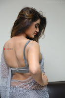 Sony Charishta in Saree Deep neck Choli ~  Exclusive 02.JPG