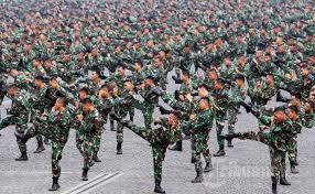 Ternyata Amerika Gentar Dengan Indonesia