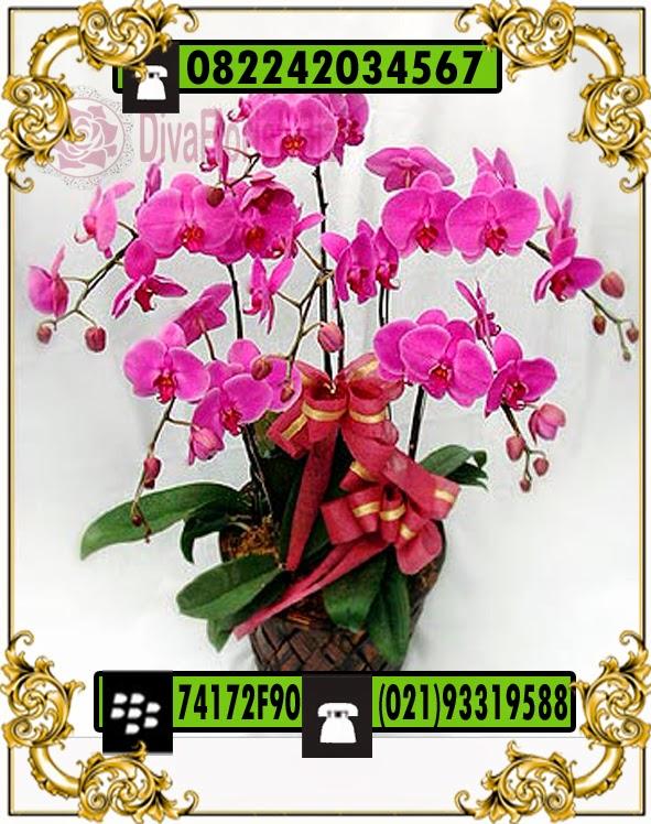 bunga Meja Mewah