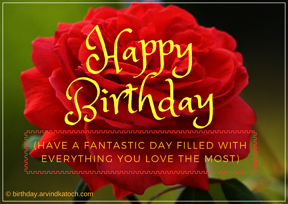 fantastic, day, love, Red, Rose, Birthday Card,