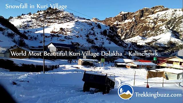 snowfall in Kuri Village Kalinchowk