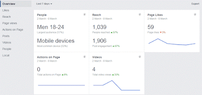 Facebook Insight- Overview