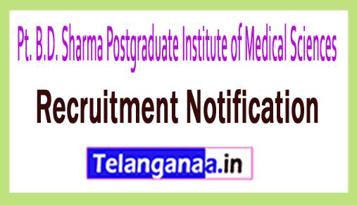 PGIMS Pt. B.D. Sharma Postgraduate Institute of Medical Sciences Rohtak Recruitment Notification