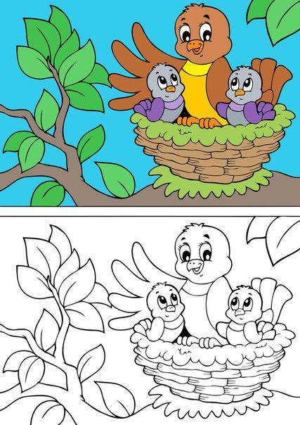 Desenhos De Pássaros Para Colorir Como Fazer