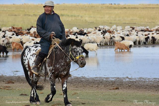 Mongolie Septembre 2015