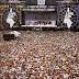 Al di là del tempo e dello spazio. I Queen al Live Aid nel 1985