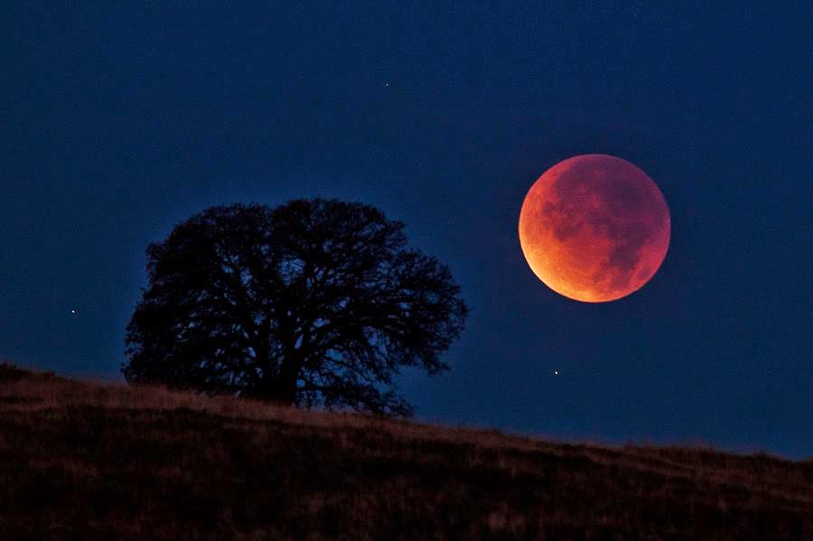 PATCHWORKS: Total Lunar Eclipse-Oct. 8