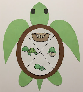 https://www.teacherspayteachers.com/Product/Sea-Turtle-Life-Cycle-Craft-2828004