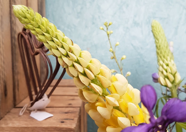 In a vase on a monday Delphs and lupins