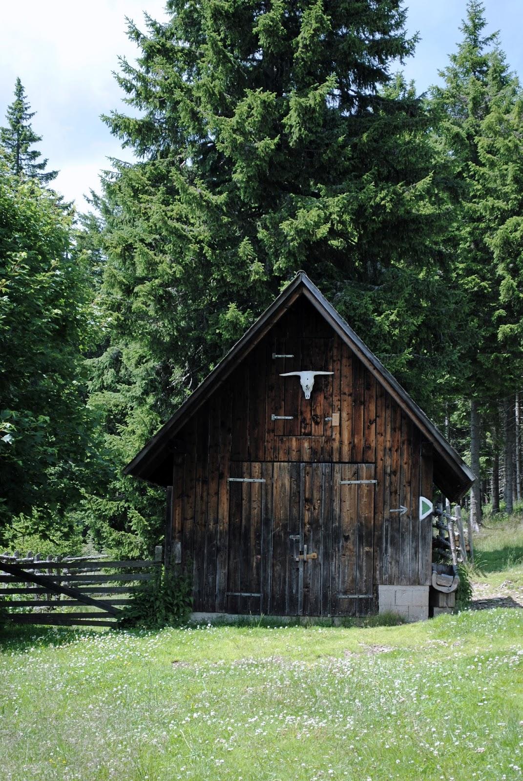 Hütte am Teufelstein