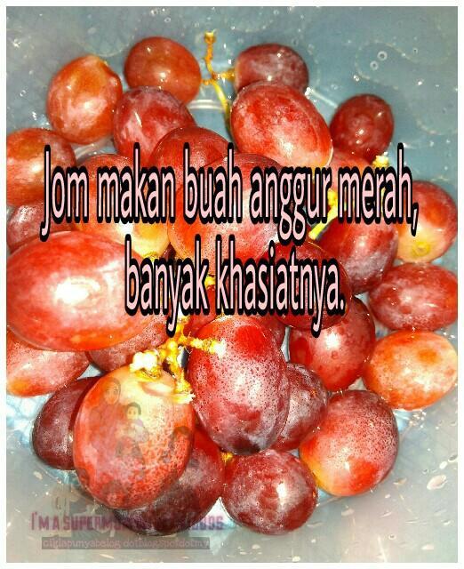 Jom makan buah anggur merah, banyak khasiatnya.