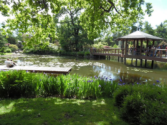 staw i most w ogrodzie japońskim