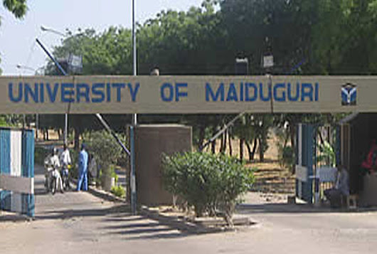 Confusion as 70 lecturers quit UNIMAID over Boko Haram attacks