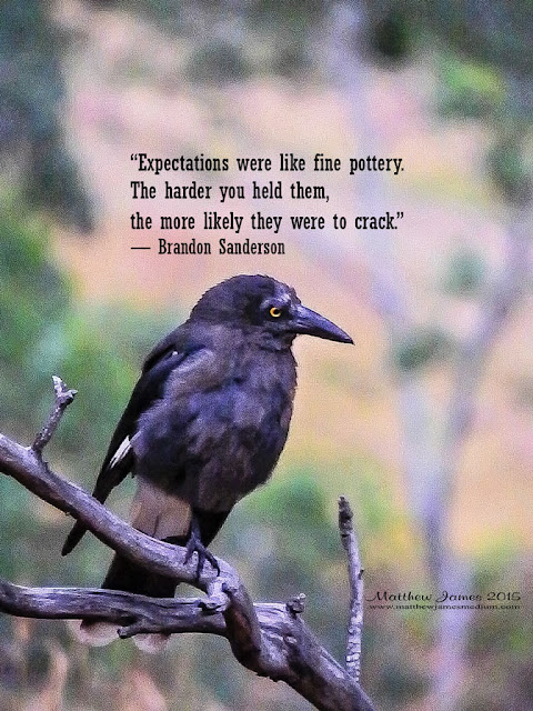 'Expectations were like fine pottery. The harder you held them, the more likely they were to crack' - Brandon Sanderson