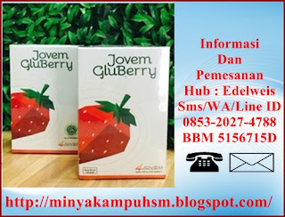 4Jovem Gluberry Untuk Menggemukan Badan, program penggemukan