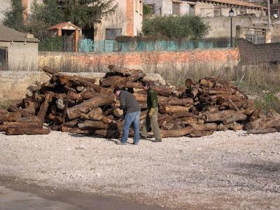Sant Antoni 2009 fotos de Lluis Belsa 7