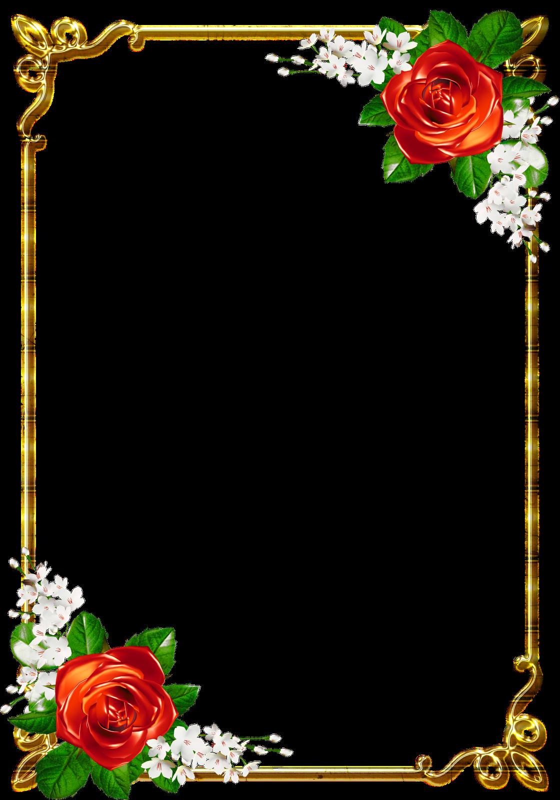 frames png douradas com rosa vermelhas