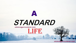How To Maintain a Standard Life