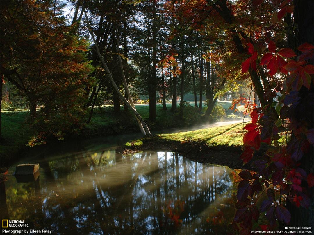 Un mundo en paz fotos paisajes - Imagenes paisajes otonales ...