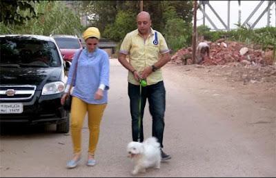 قصة الكلب سلطان, اسرة مصرية, عيد ميلاد,