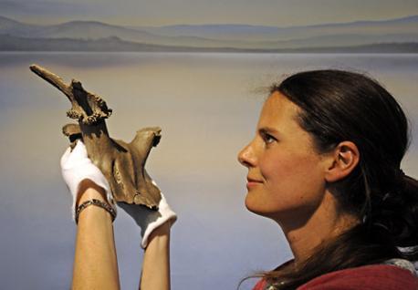 Profesora Nicky Milner, del Departamento de Arqueología de la Universidad de York