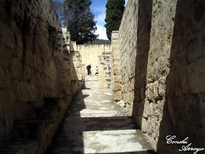 Callejón entre el Patio de Pilares y las viviendas de Servicio en Medina Azahara - Córdoba