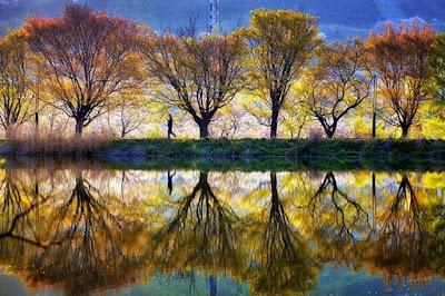 Gambar Pemandangan Indah di Korea Foto Terbaik Tempat Wisata Danau Populer