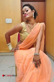 Actress Nisha Pictures in Saree at Jakkanna Movie Audio Launch 0021