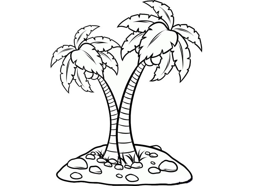 mewarnai gambar pohon kelapa gambar mewarnai