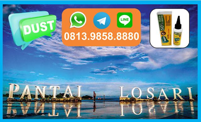 Obat Anti Rayap di Makassar