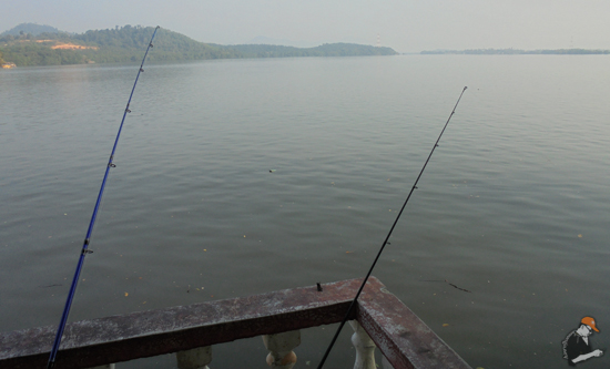 Cara mudah elak kena gigit nyamuk ketika memancing tepi laut