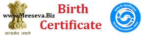 Birth Certificate Status